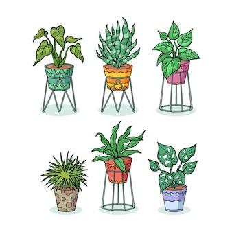 Hand gezeichnete zimmerpflanzensammlung