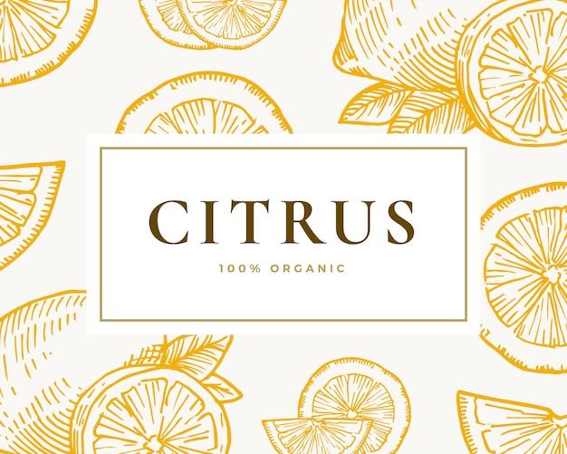 Hand gezeichnete zitrus-illustrationskarte. abstrakter zitronen- und orangenskizzenhintergrund mit klassischer retro-typografie.