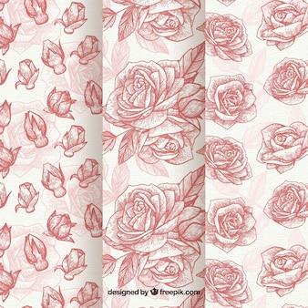 Hand gezeichneten muster von rosen gesetzt