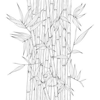 Hand gezeichneter bambus lokalisiert auf weiß