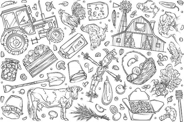 Hand gezeichneter gesetzter gekritzelhintergrund der biologischen landwirtschaft und des lebensmittels