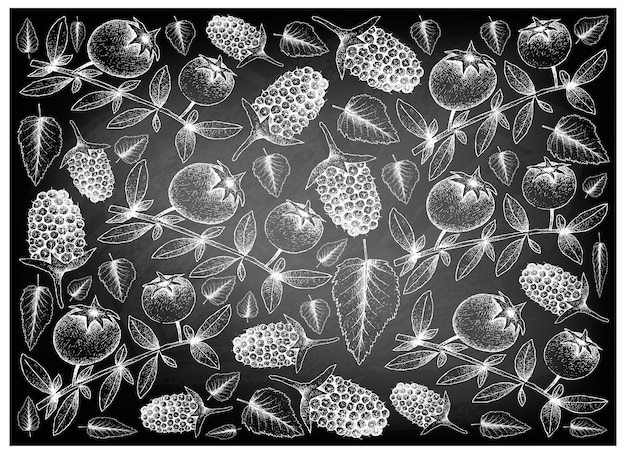 Hand gezeichneter hintergrund der chilenischen guave