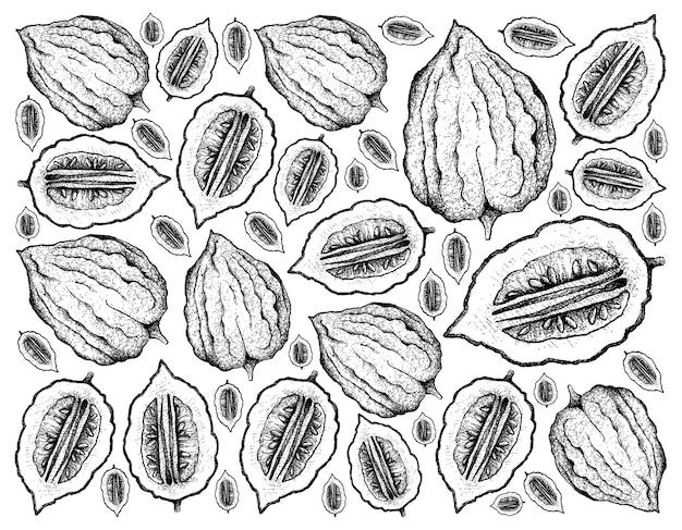 Hand gezeichneter hintergrund der frischen etrog-frucht