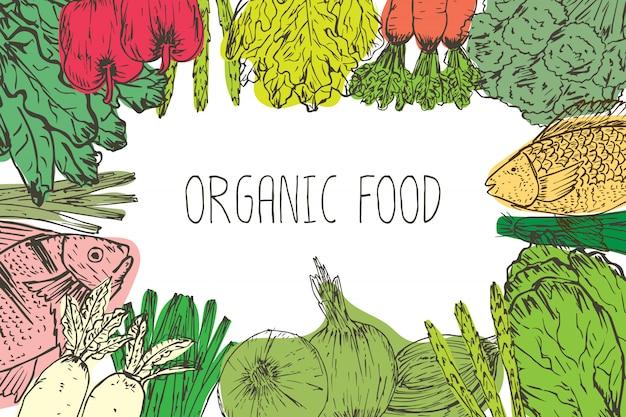 Hand gezeichneter hintergrund des biologischen lebensmittels. bio-kräuter, gewürze und meeresfrüchte. gesunde lebensmittelzeichnungen stellten elemente für menüdesign ein. vektor-illustration