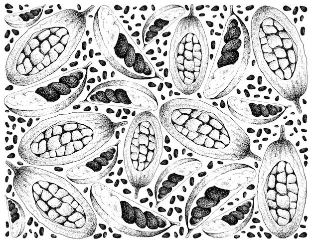 Hand gezeichneter hintergrund von bananen de macaco und baobab fruits