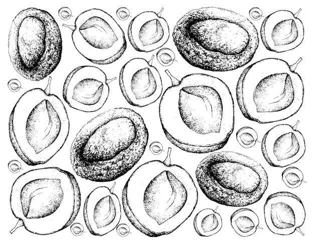 Hand gezeichneter hintergrund von frischen aprikosenfrüchten