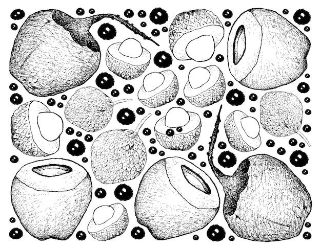 Hand gezeichneter hintergrund von litschi-und kokosnuss-früchten