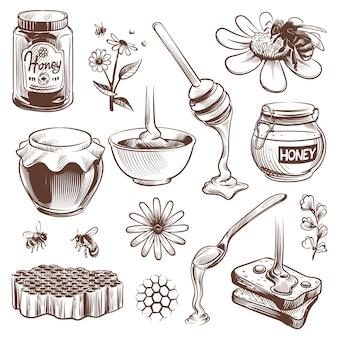 Hand gezeichneter honig