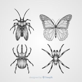 Hand gezeichneter insektenskizzensatz