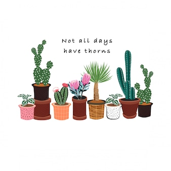 Hand gezeichneter kaktus in vieler art topfmuster