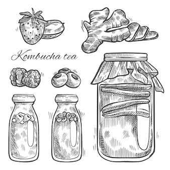 Hand gezeichneter kombucha-tee