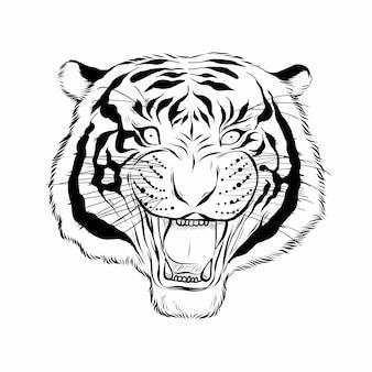 Hand gezeichneter kopf des tigers.