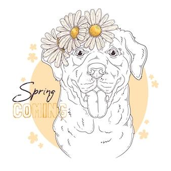 Hand gezeichneter labrador retriever-hund mit blumen