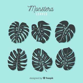 Hand gezeichneter monstera-packsatz
