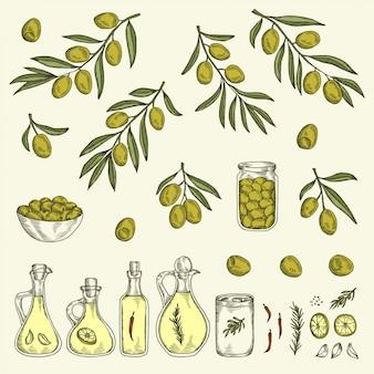 Hand gezeichneter olivgrüner grafiksatz