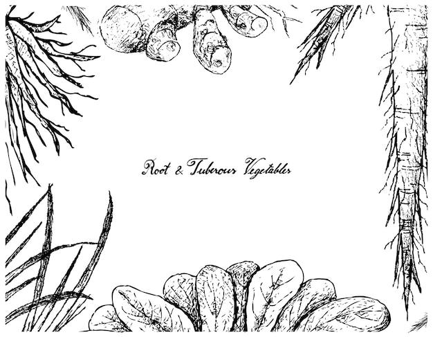 Hand gezeichneter rahmen der wurzel und des tumorösen gemüses