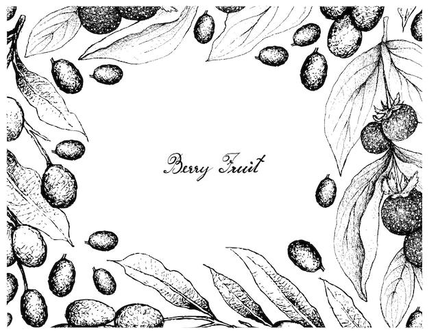 Hand gezeichneter rahmen von ceylon stachelbeeren und von brasilien-pflaumen