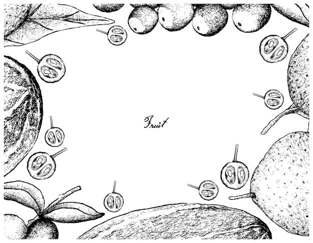 Hand gezeichneter rahmen von frischen früchten auf weißem hintergrund