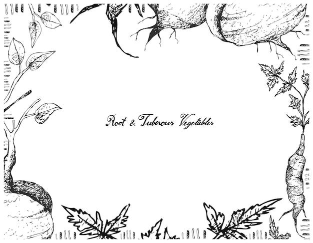 Hand gezeichneter rahmen von jicama oder von arracachaon