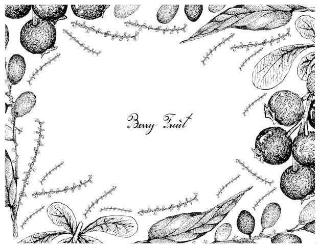 Hand gezeichneter rahmen von lingonberries und von lepisanthes rubiginosa-früchten