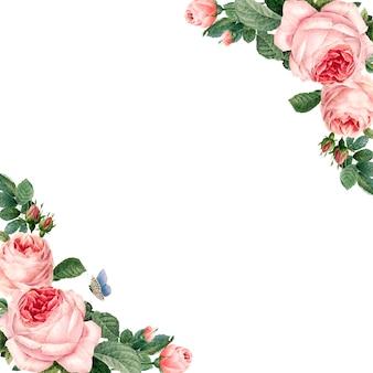 Hand gezeichneter rosa rosenrahmen auf weißem hintergrundvektor
