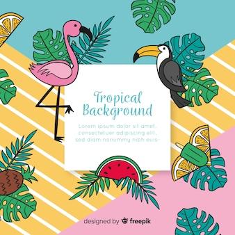 Hand gezeichneter tropischer hintergrund