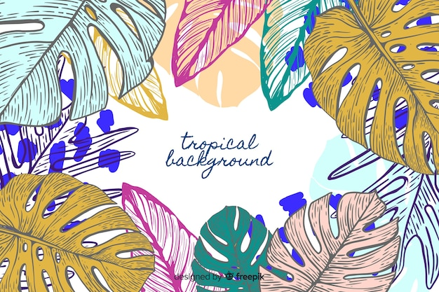 Hand gezeichneter tropischer monstera hintergrund