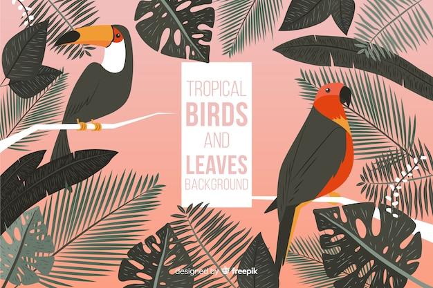 Hand gezeichneter tropischer vogel- und blatthintergrund