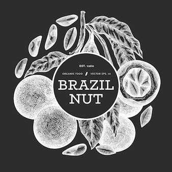 Hand gezeichnetes brasilianisches nussetikett