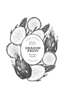 Hand gezeichnetes drachenfruchtdesign