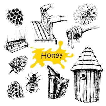Hand gezeichnetes honigset