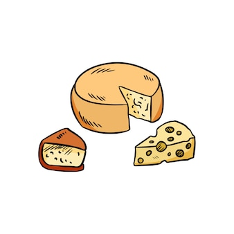 Hand gezeichnetes organisches buntes gekritzel des käses