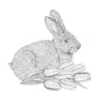 Hand gezeichnetes osterkaninchen mit tulpen. skizzengravurhase, realistisches kaninchen, symbol von ostern und frühling.