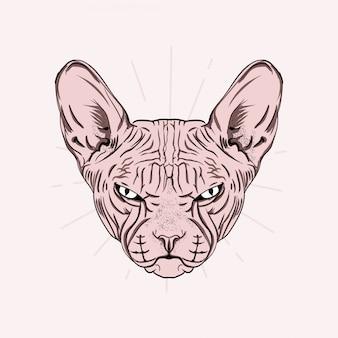 Hand gezeichnetes porträt der niedlichen sphinxkatze. illustration