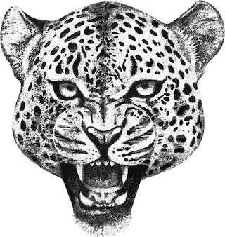 Hand gezeichnetes porträt des brüllenleopardkopfes