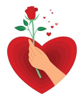 Hand halten sie eine rote rose in einem großen herzen für die valentinstagdekoration.