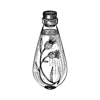 Hand skizzierte flaschen mit blütenextrakt im vintage-stil. glaswaren handzeichnung.