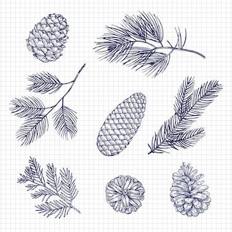 Hand skizzierte tannenbaumaste und kegelvektorillustration