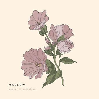 Hand zeichnen malvenblumen illustration