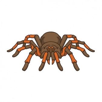 Handgemalte spinnenentwurf