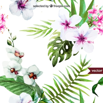 Handgemalte tropischen pflanzen