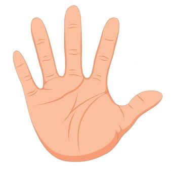 Handgeste mit glatter haut