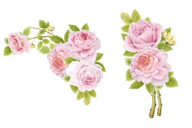Handgezeichnete aquarell rosensträuße set