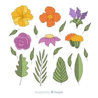 Handgezeichnete blüten und blätter