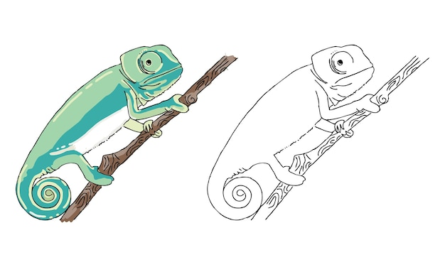 Handgezeichnete chamäleon-malvorlagen für kinder