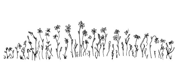 Handgezeichnete einfache vektorzeichnung in schwarzem umriss wilde wiesengräser wildblumen ährchen