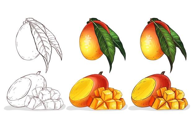 Handgezeichnete farbmangoillustration