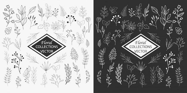 Handgezeichnete florale elemente sammlungen