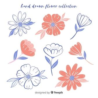 Handgezeichnete florale skizzensammlung