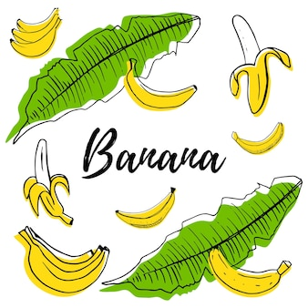 Handgezeichnete früchte banane set mit farbformen vektor-illustration isoliert auf weißem hintergrund